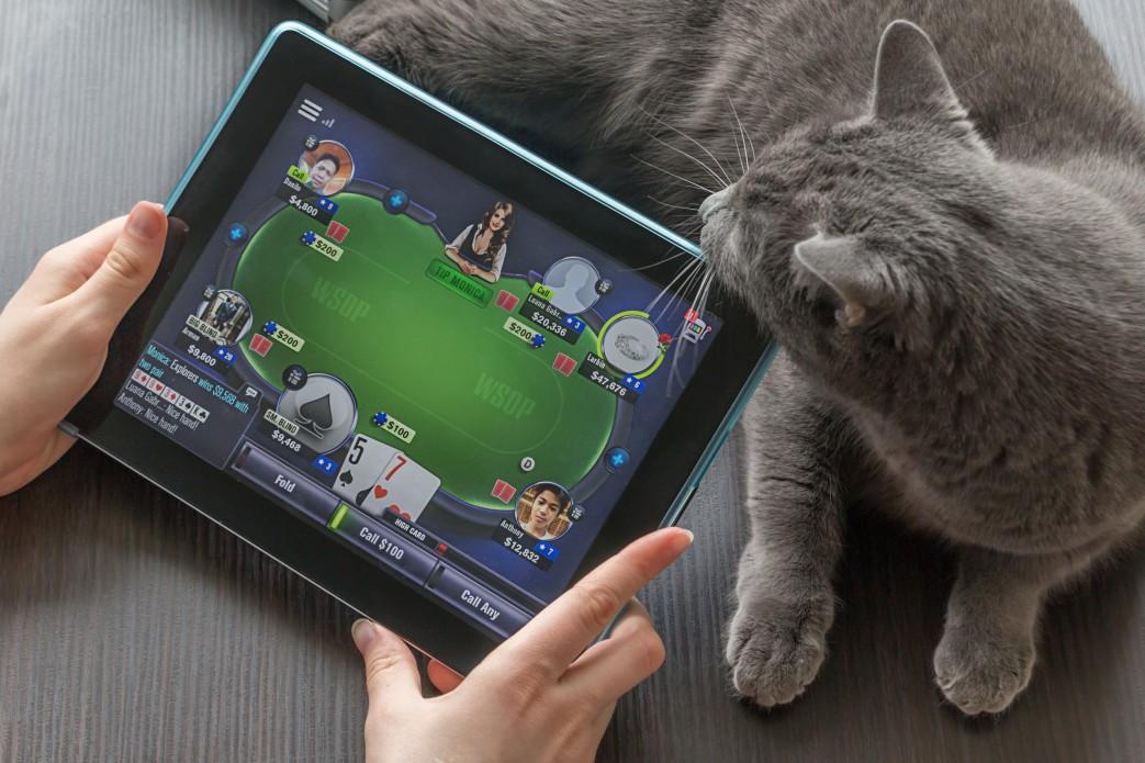casinos en ligne suisses
